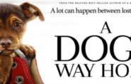 A Dogs Way Home (PG) 1hr 37mins